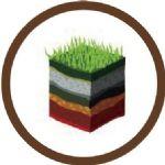 Progetto Soil4wine